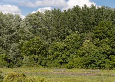 Urbavenir Terrain_Jarville_Parcelle_3-400x284 Des terrains en Lorraine