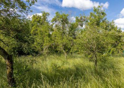 Urbavenir Terrain_Malzeville_Parcelle2-1-400x284 Des terrains en Lorraine